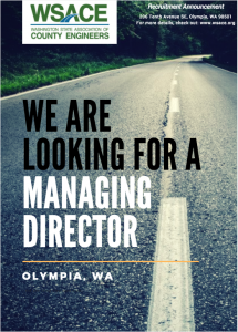 WSACE Managing Director Job Description