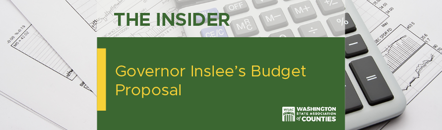 image for Governor Inslees's Budget Proposal