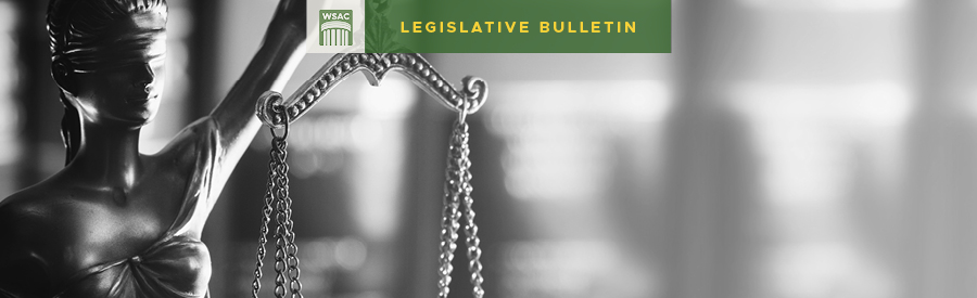 trial court indigent defense – Washington State Association