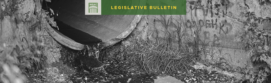 image for Culvert Work Session and Bills on the Move